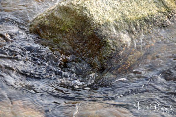acqua-006ACC4302F-8EFA-5B34-7B1E-7583E30C0152.jpg