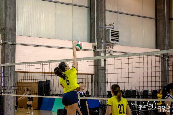 volley-2130BBBBA0-E10E-20C7-1CC8-8A85814628CB.jpg