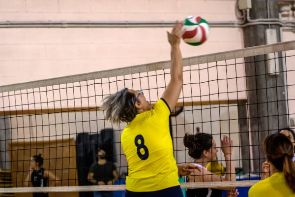 volley-2655344BEC-FCCF-1450-3600-980840DEAB76.jpg