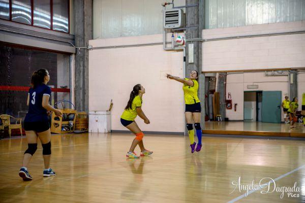 volley-495D8F3473-E113-5CF3-43D8-E6C3863C6EE6.jpg