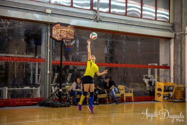 volley-50A1043BA4-8244-33B9-D35D-135E98BBA8F2.jpg