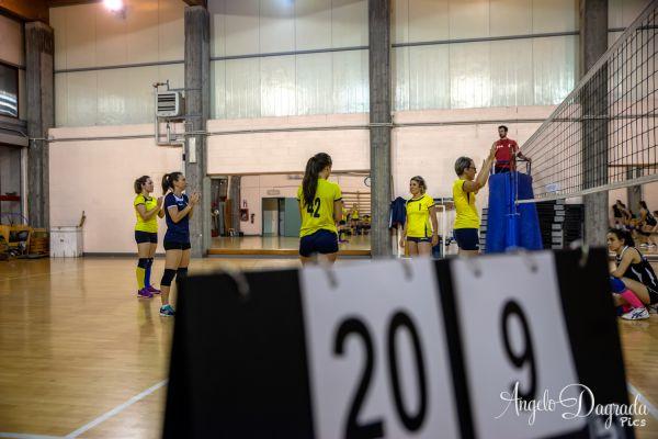 volley-53F071C9A1-9ADA-B365-783B-FF6EC19A3545.jpg