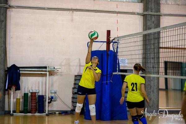 volley-5CFE11D9B-7B3F-E89C-786B-513E4D88B314.jpg