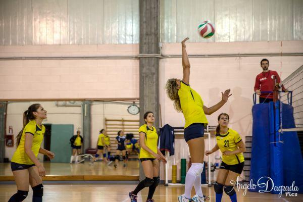 volley-65AF7922A6-8959-84D0-7803-4168D40DFC65.jpg